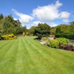 Lawn Maintenance Aldershot